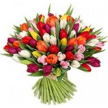 Bouquet of Tulips 51 pcs
