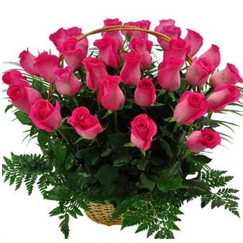 Basket of pink roses (35 pcs)
