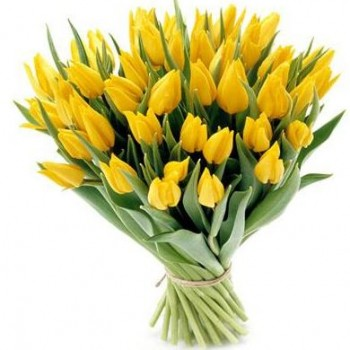 Yellow tulips (select number)