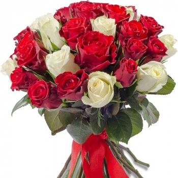 Red and white roses 40 cm (variable quantity of flowers)