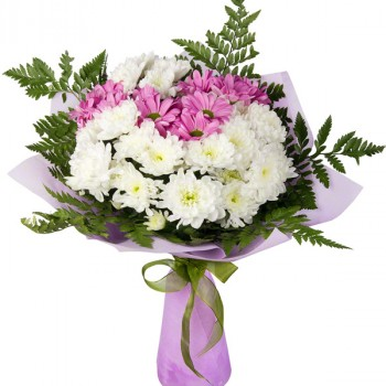 White and purple chrysanthemums