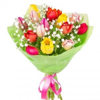 Bouquet of tulips (15 pcs)