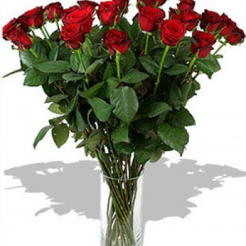 Long red roses 70 cm (select number of flowers)