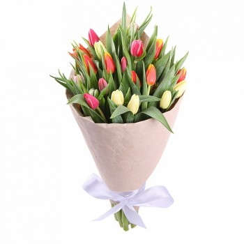Armful of tulips in a package (21 pc)